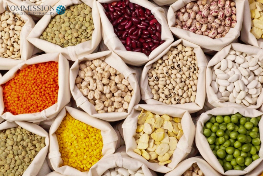 Pulses and Seeds